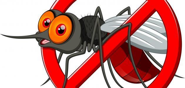كيفية مكافحة البعوض