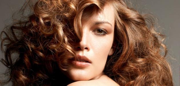 انواع شعر