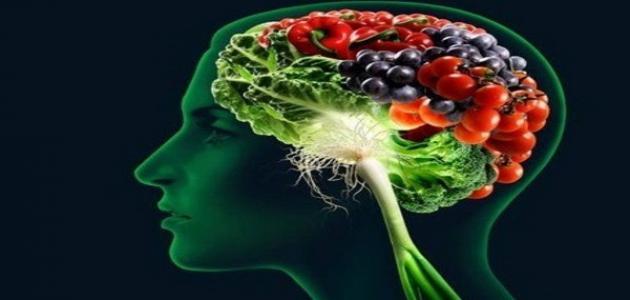 ما هو غذاء الدماغ