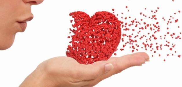 ما هي أنواع الحب
