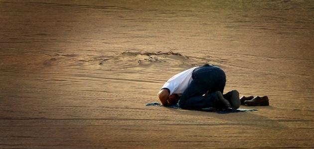 ما هو فضل الصلاة