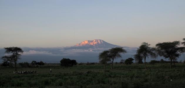 ما هو أعلى جبل في إفريقيا