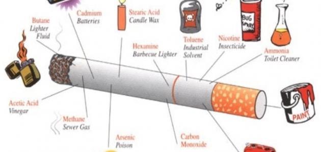ما هي الأمراض التي تصيب الجهاز التنفسي