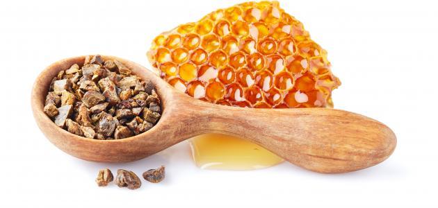 ما هي فوائد عكبر النحل