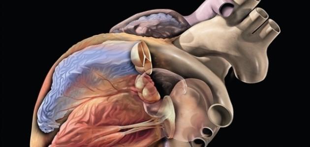 ما هي أعراض قصور القلب