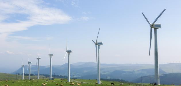 أنواع الرياح