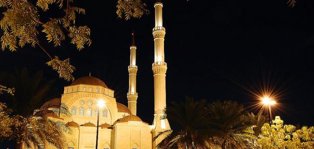 ما هو نظام الحكم في سلطنة عمان