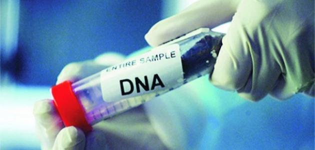 ما هو تحليل DNA