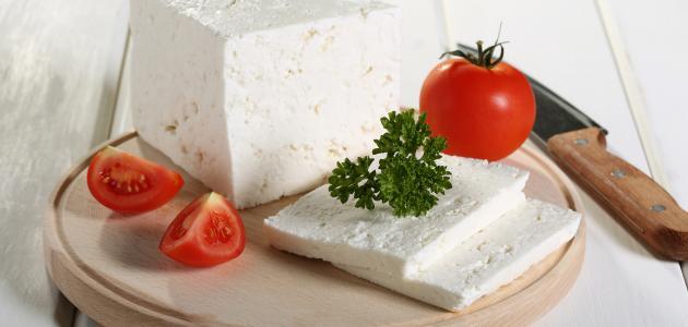 كيفية صناعة الجبن الرومى