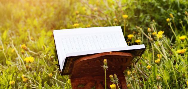 ما الحكمة من نزول القرآن منجماً