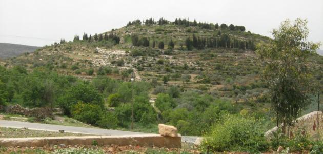 أين تقع بلدة عمورية