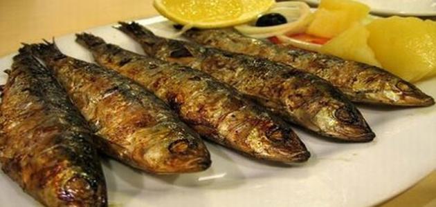 كيفية طبخ سمك السردين