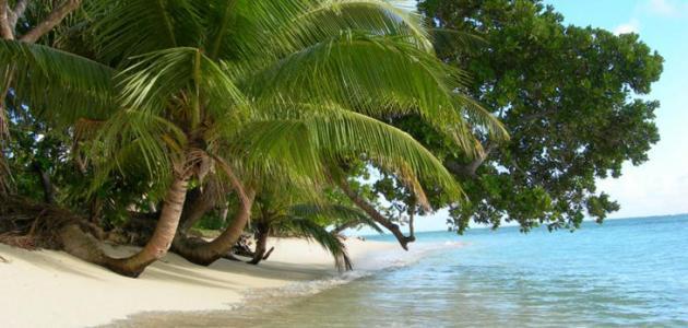 أين تقع جزيرة مدغشقر