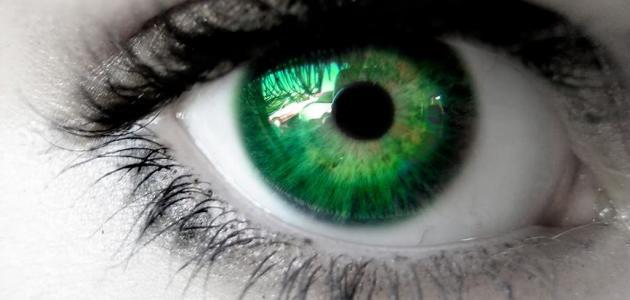 ما هي أسباب رفة العين
