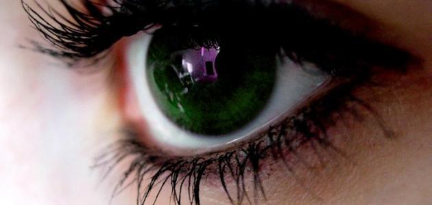 ما هي أعراض حساسية العين