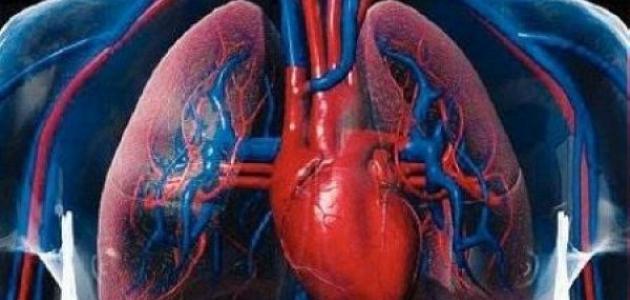 ما هو مرض ضعف عضلة القلب