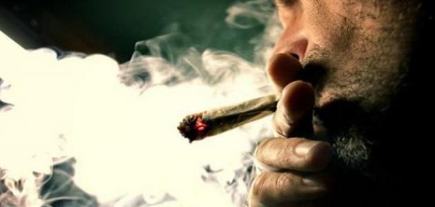 ما هي أضرار الماريجوانا