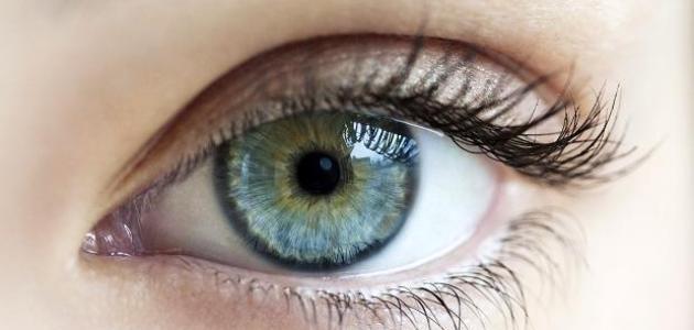 ما هي أسباب ارتفاع ضغط العين