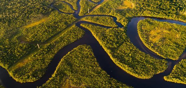 أكبر الأنهار في العالم