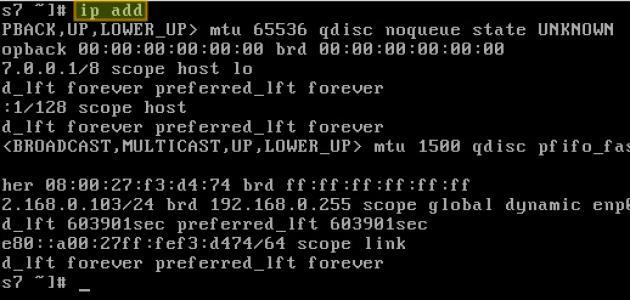 ماذا تعني IP