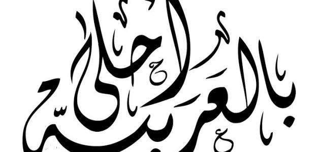 من أين أتت اللغة العربية