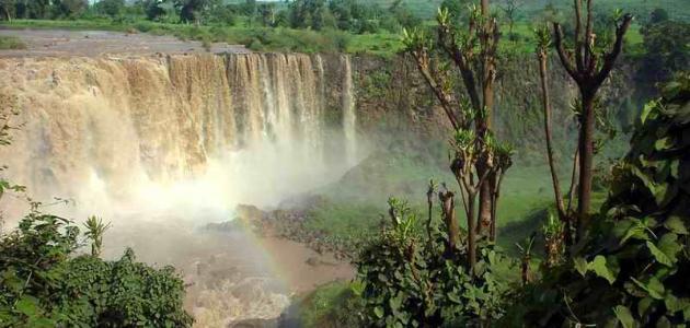 من أين ينبع النيل الأبيض