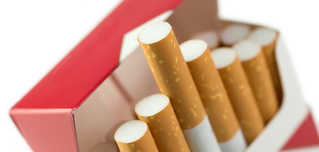 من اخترع السجائر