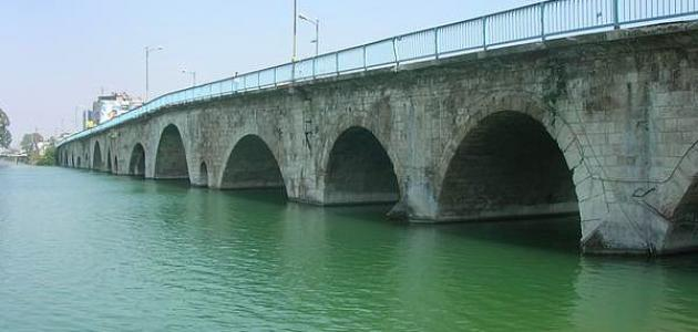 أين يقع نهر سيحون وجيحون