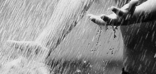كلام عن المطر