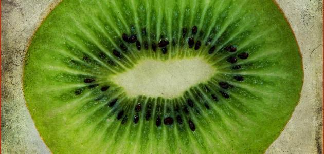 فوائد فاكهة الكيوي