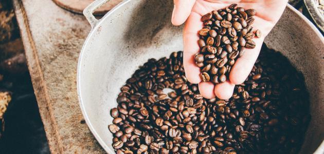 ما هو أصل القهوة