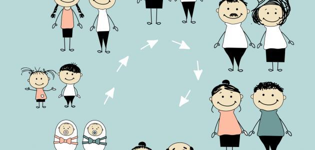 مراحل نمو الإنسان موضوع