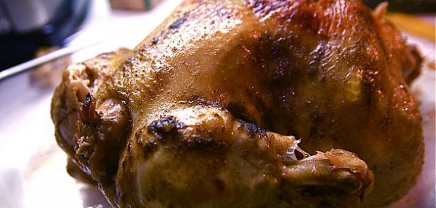 فوائد لحم الدجاج
