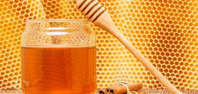 فوائد العسل والقرفة