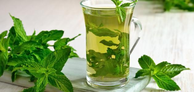فوائد شرب النعناع المغلي