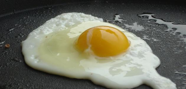 Image result for بيض مقلي