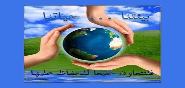 التوازن الطبيعي وطرق حماية البيئة