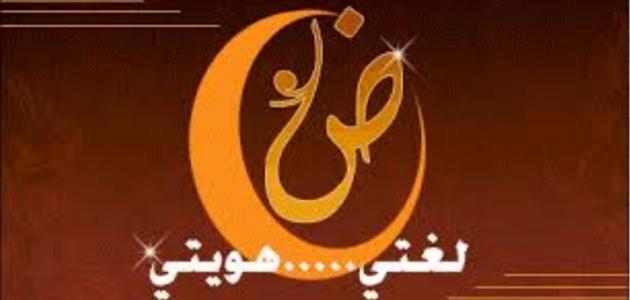 أهمية اللغة العربية الفصحى