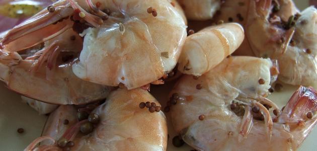 طرق طبخ الروبيان