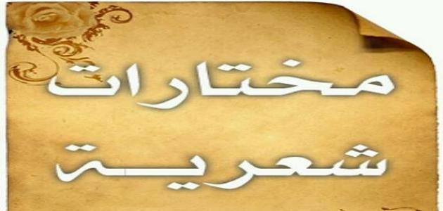 أجمل الأشعار في مدح الرسول المختار صلى الله عليه وسلم - محمد عبد الرحيم,  محمد