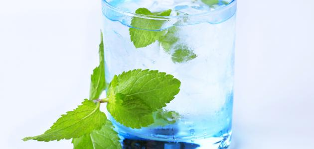فوائد ماء النعناع
