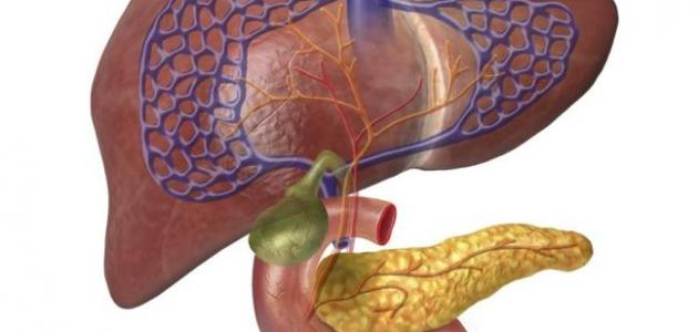طرق تنظيف الكبد