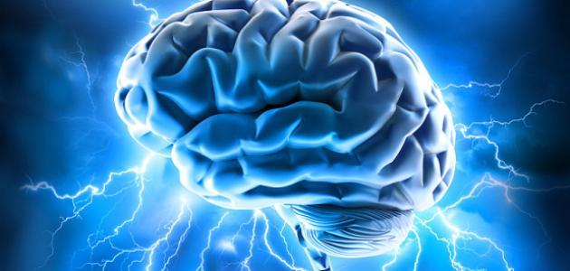 أهمية العقل