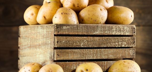 طرق تخزين البطاطس