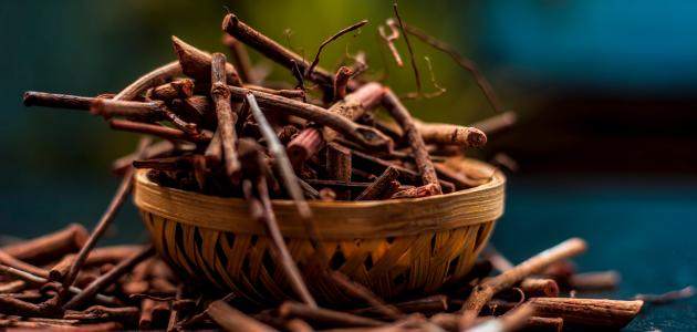 فوائد عشبة الفوة