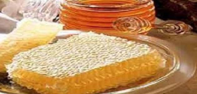 فوائد غذاء ملكات النحل للحمل