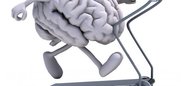 تقوية الذاكرة وسرعة الحفظ