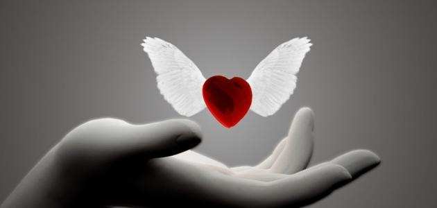 الحياة خُلقت للحب والجمال