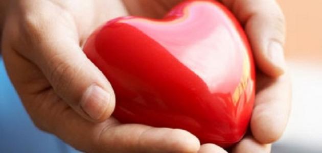 أهمية القلب