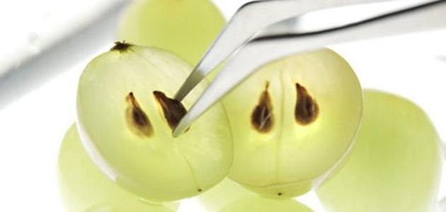 فوائد بذور العنب للبشرة